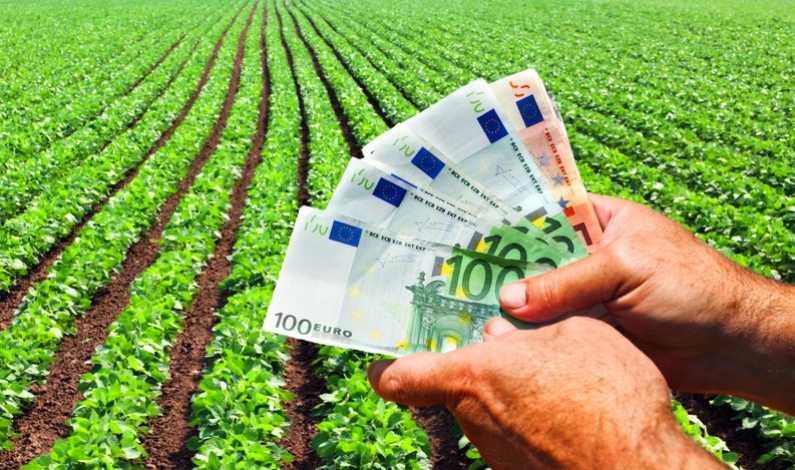 Proiecte fonduri europene 2020