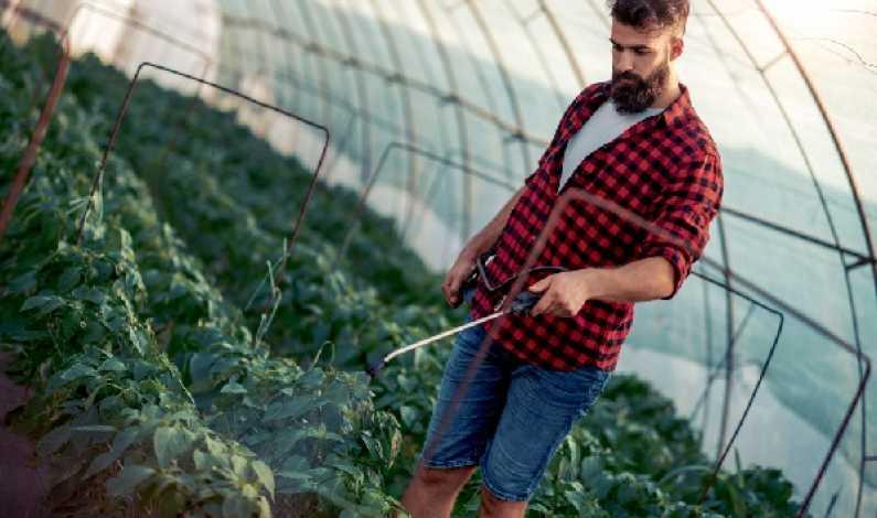 Site- ul de intalnire pentru tinerii agricultori